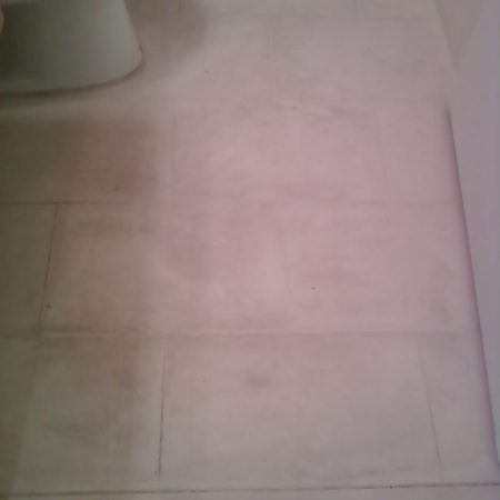 Soiled Bathroom Limestone Floor