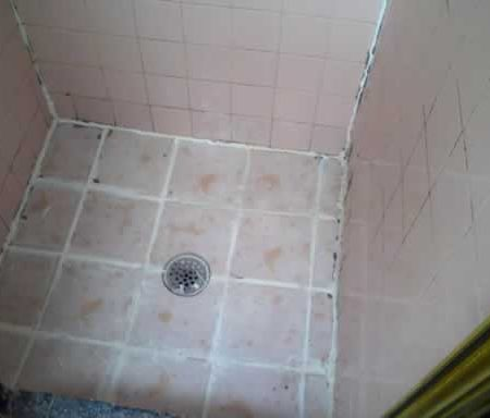 Mold on Ceramic Tiles. Disrepair Shower Cabin
