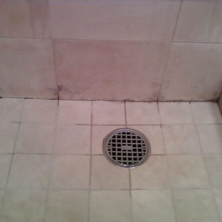 Mold on Marble Tiles in Shower Stall
