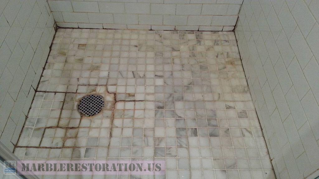 Salt Build Ups Black Mold Efflorescence Shower Floor